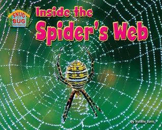 Inside the Spider's Web
