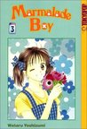 Marmalade Boy, Vol. 3 (Marmalade Boy, #3)