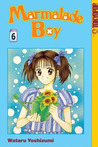 Marmalade Boy, Vol. 6 (Marmalade Boy, #6)