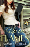 Up in Flames (Barringer's Pass #3)