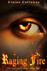 Raging Fire (The Elemental Clans, #2)