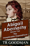 The Inexplicable Expenditure (Abigail Abernathy Volume 2)