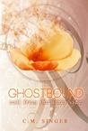 Call from the Other Side (Ghostbound #2)