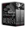 Two Shades of Seduction Box Set (Love's Revenge & Love's Portrait)