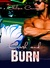 Crash and Burn (Daddy's Girls, #0.5)