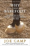 WHY OUR HORSES ARE BAREFOOT - Everything We've Learned About the Health and Happiness of the Hoof (eBook Nuggets from The Soul of a Horse)