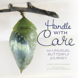 Handle with Care: An Unusual Butterfly Journey