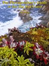 The Photographer's Guide to the Big Sur Coast