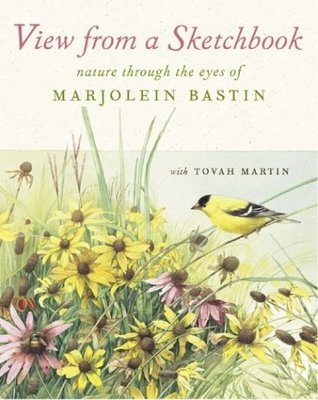 View from a Sketchbook by Marjolein Bastin
