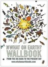The What on Earth? Wallbook: A Timeline from the Big Bang to the Present Day