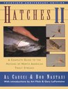 Hatches II