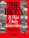 The Bronx: It Was Only Yesterday (Life in the Bronx Series)