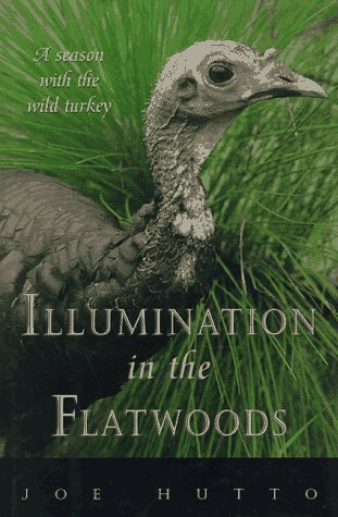 Illumination in the Flatwoods by Joe Hutto