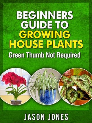 Beginners Guide To Growing House Plants