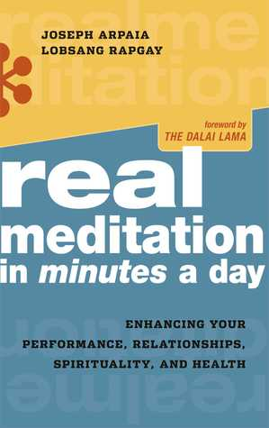 Real Meditation in Minutes a Day by Joseph Arpaia