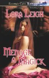 Menage a Magick (Wizard Twins, #1)