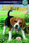 Lucy on the Loose (Absolutely Lucy, #2)