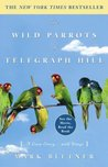 The Wild Parrots of Telegraph Hill by Mark Bittner