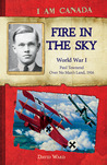 Fire in the Sky: World War I, Paul Townend, Over No Man's Land, 1916