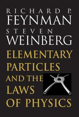 Elementary Particles and the Laws of Physics by Richard Feynman