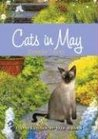 Cats in May