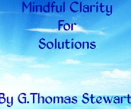 Mindful Clarity For Solutions