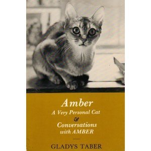 Amber, a Very Personal Cat and Conversations With Amber