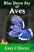 Blue Dawn Jay of Aves