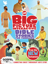 The Big Picture Interactive Bible Stories for Toddlers New Te... by B&H Editorial Staff