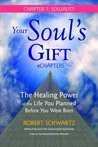 Your Soul's Gift eChapters - Chapter 7: Sexuality: The Healing Power of the Life You Planned Before You Were Born