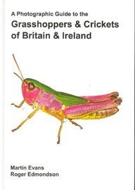 A Photographic Guide To The Grasshoppers And Crickets Of Brit... by Martin Evans