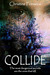 Collide (The Solomon Experiment #1)