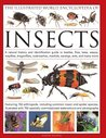 The Illustrated World Encyclopedia of Insects: A Natural History and Identification Guide to Beetles, Flies, Bees, Wasps, Mayflies, Dragonflies, Cockroaches, Mantids, Earwigs, Ants and Many More