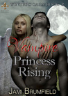 Vampire Princess Rising by Jami Brumfield