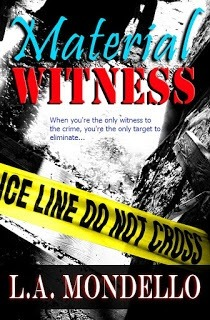 Material Witness (Heroes of Providence #1)