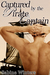 Captured by the Pirate Captain (The Pirate's Captive #1)