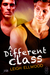 A Different Class (1Night Stand, #203)