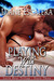 Playing With Destiny (Latin Heat Trilogy #3)