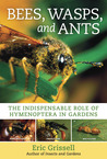 Bees, Wasps, and Ants: The Indispensable Role of Hymenoptera in Gardens