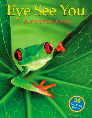 Eye See You: A Poster Book