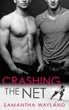 Crashing the Net (Crashing, #1)