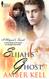 Elijah's Ghost (A Wizard's Touch, #4)