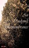 An Undying Remembrance by Eliza  Beth