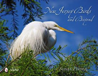 New Jersey Birds and Beyond