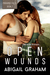 Open Wounds (Paradise Falls, #2)