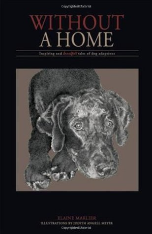 Without a Home: Inspiring and Heartfelt Tales of Dog Adoptions