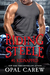 Riding Steele: Kidnapped