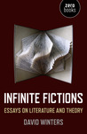 Infinite Fictions: Essays on Literature and Theory