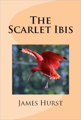 The Scarlet Ibis: The Collection of Wonder by James Hurst ...