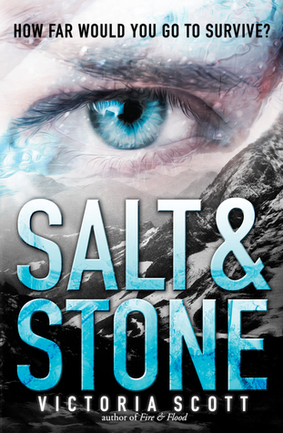 Image result for salt and stone